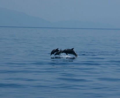 zeilvakantie zeilen blue cruise Turkije Griekenland (87)