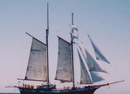 Zeilen op een uniek Tall Ship, met maar liefst 9 zeilen